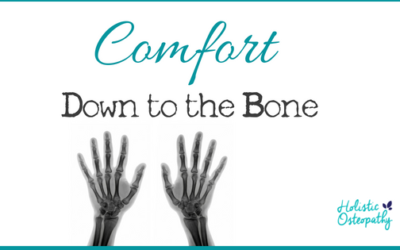 Comfort- Down To The Bone